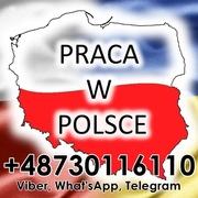 Робота в Польщі,  офіційно,  для чоловіків та жінок.