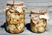 Продам Белый гриб сушеный